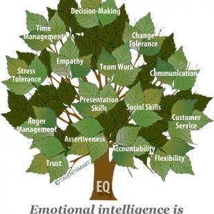 Συναισθηματική νοημοσύνη-3